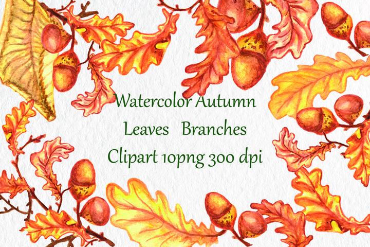 Watercolor Autumn, Leaves ,Branches Clip art , Watercolor