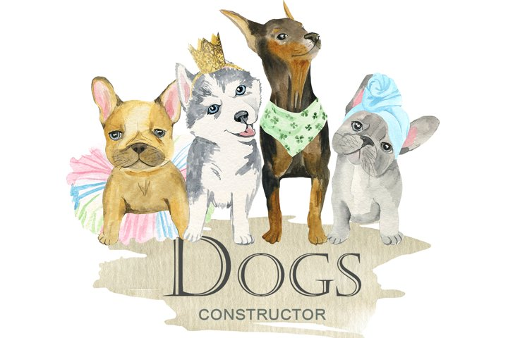 Dogs constructor