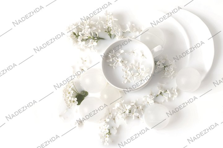 Flowers of white lilac in milk