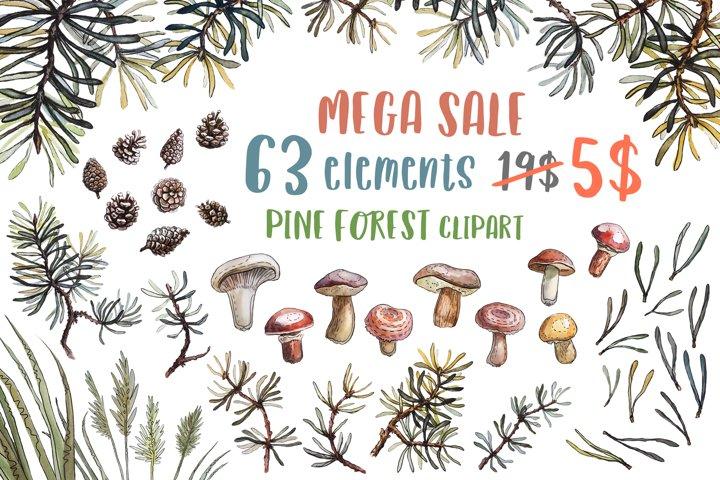 Pine forest clipart bundle PNG Watercolor mushrooms clip art