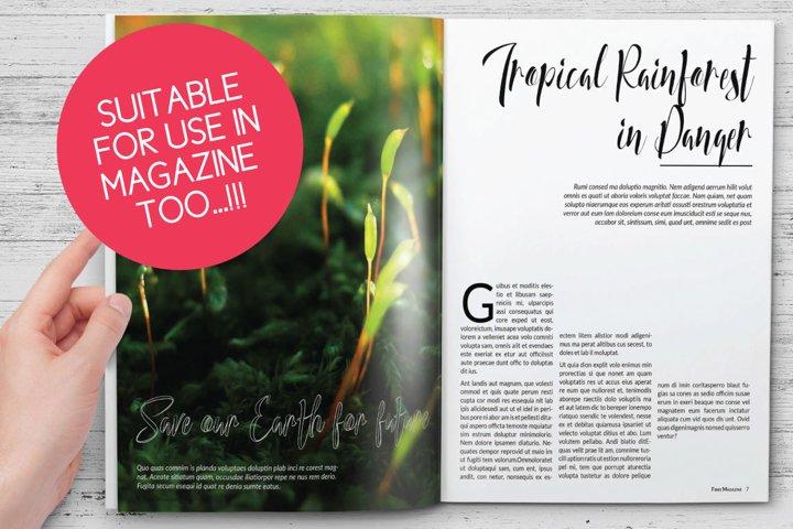 Honey Land Typeface - Free Font of The Week Design0