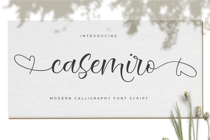 Casemiro Script