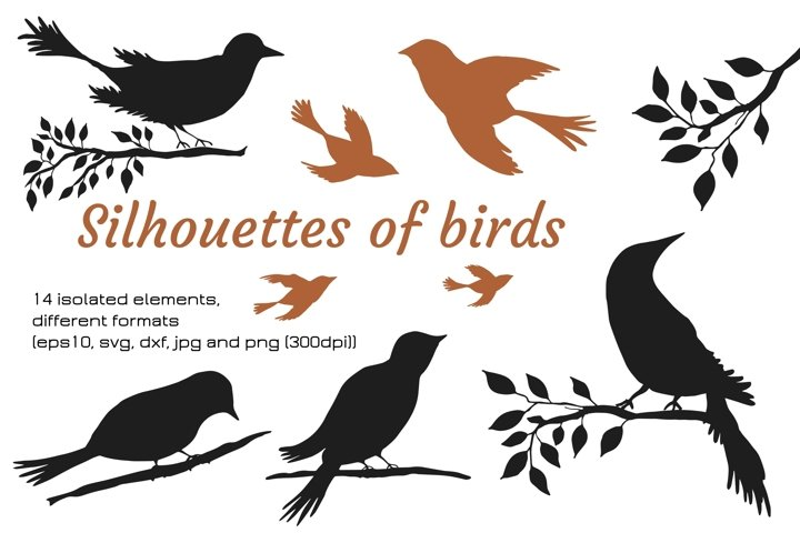 Digital silhouettes of birds SVG, PNG, EPS10, JPG, DXF