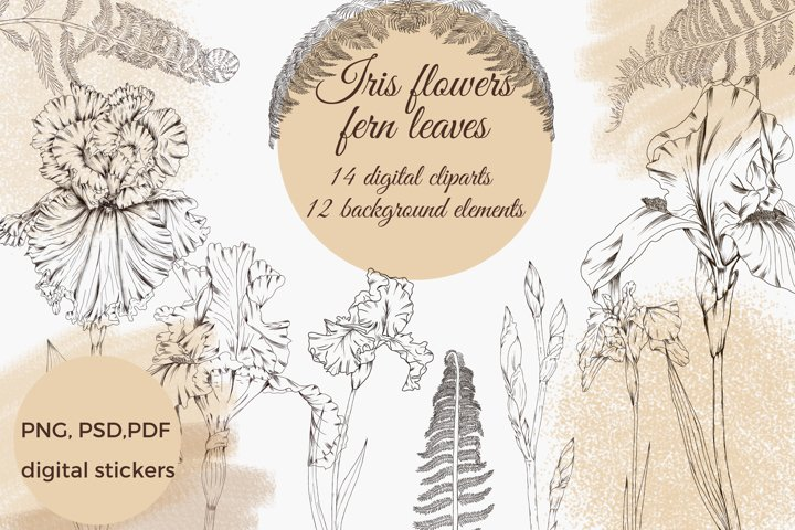 iris flowers and fern png design elements, graphic flowers