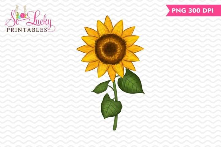 Sunflower painted printable sublimation design