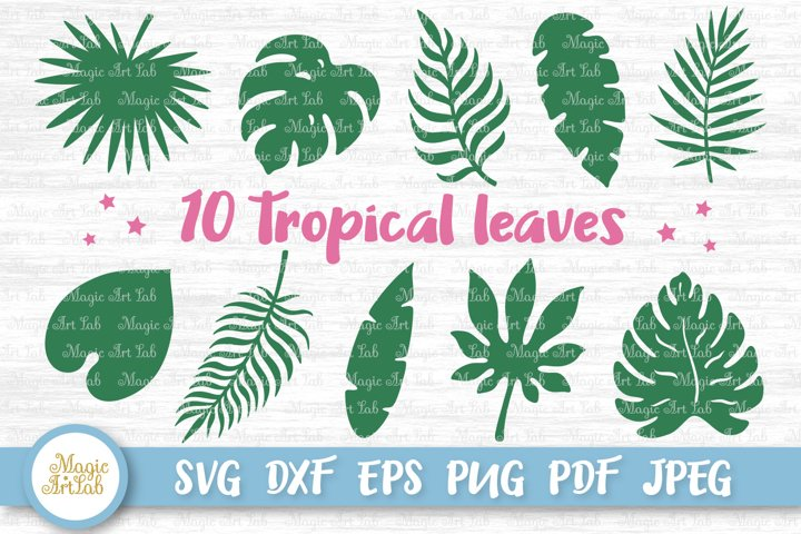 Tropical leaves svg, Tropical party decor svg, Jungle leaves