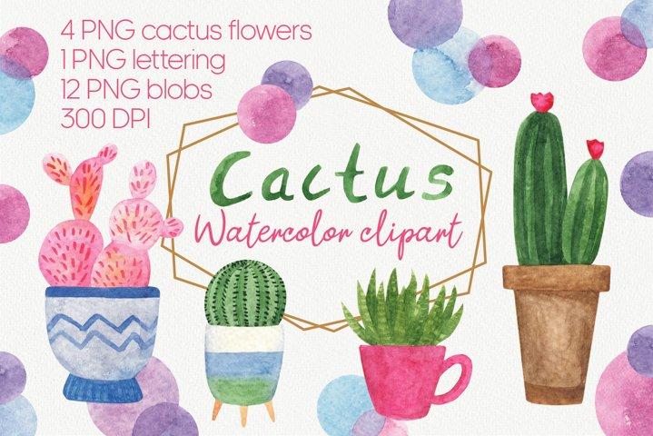 Watercolor cactus clipart PNG, succulent plant, cute cactus