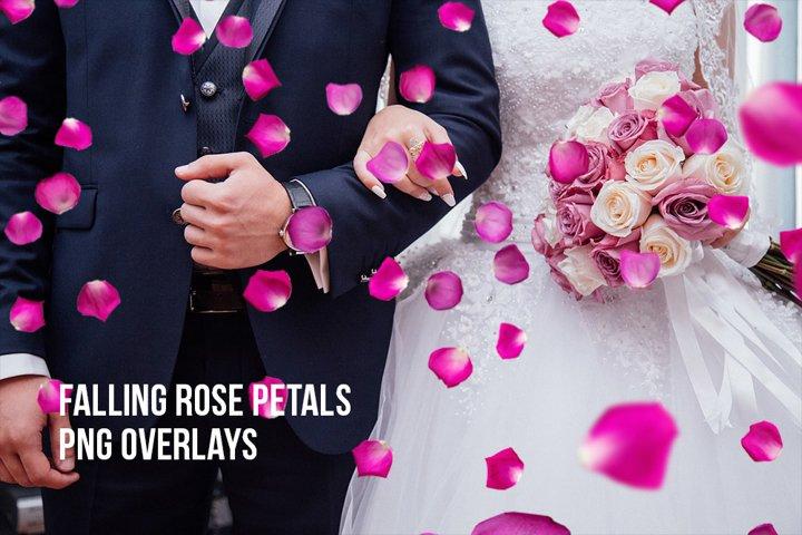 Rose Petal Overlay