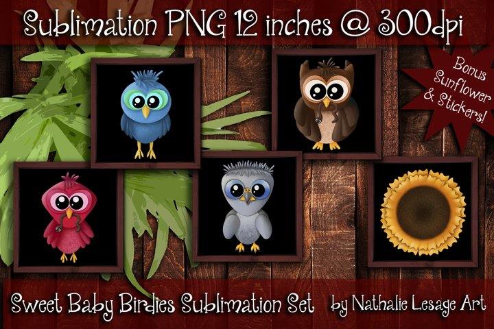 Baby Birds Cardinal Blue Jay Owl Bald Eagle Sublimation Set