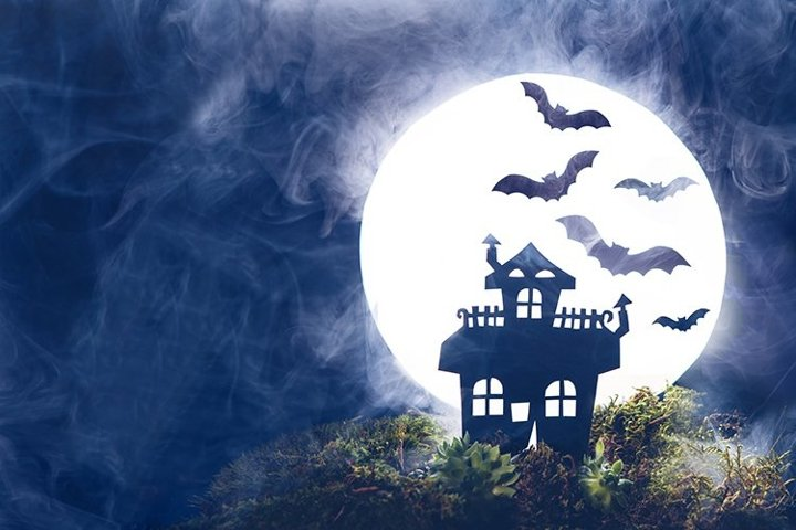 Silhouette of an old house. Bats, fog, Full moon. Halloween.