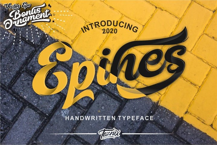 Epines Bold Brush Modern Script Bonus Swash