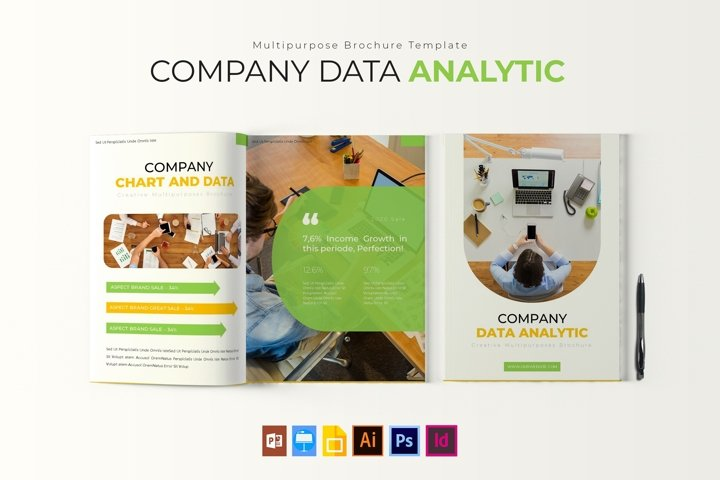Company Data Analytic | Report Template
