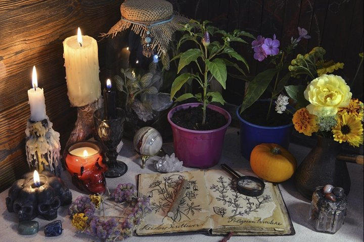 Still life with botanical drawings