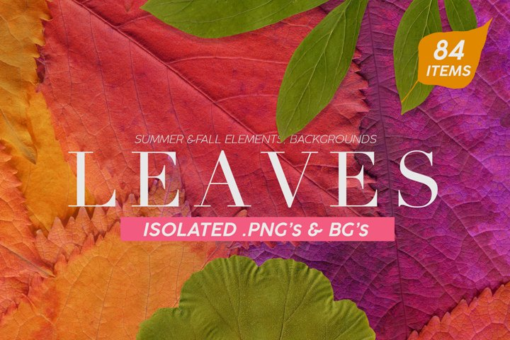 Fall Leaves Elements & Backgrounds Bundle