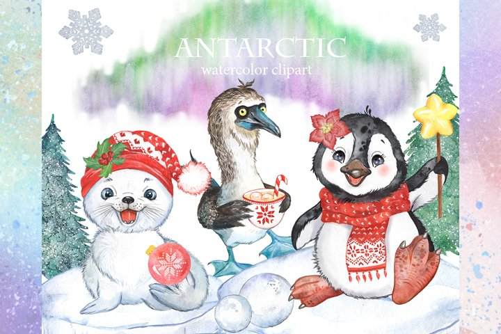Antarctic animals christmas clipart.Penguin, baby seal,bird