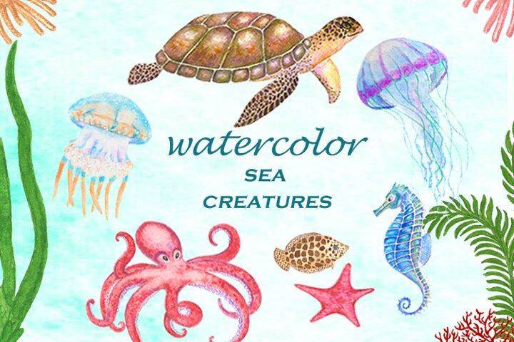 Sea life. Set of watercolor sea creatures