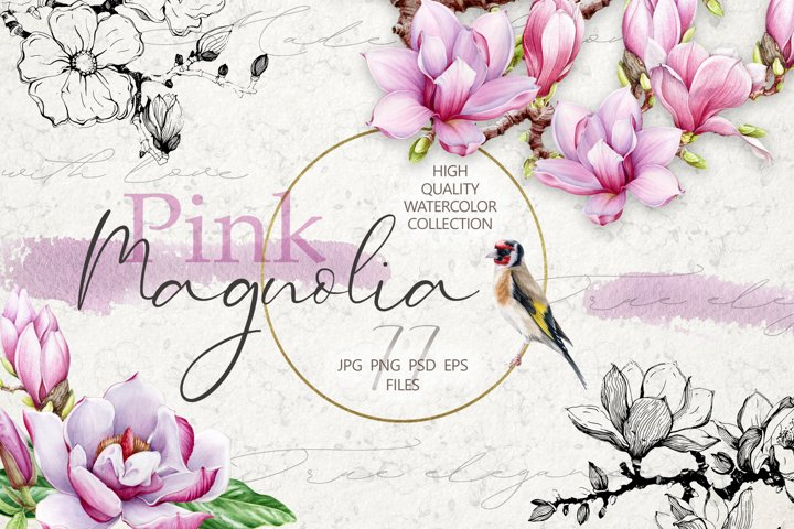 Pink Magnolia Watercolor Collection, Botanical Flower Set