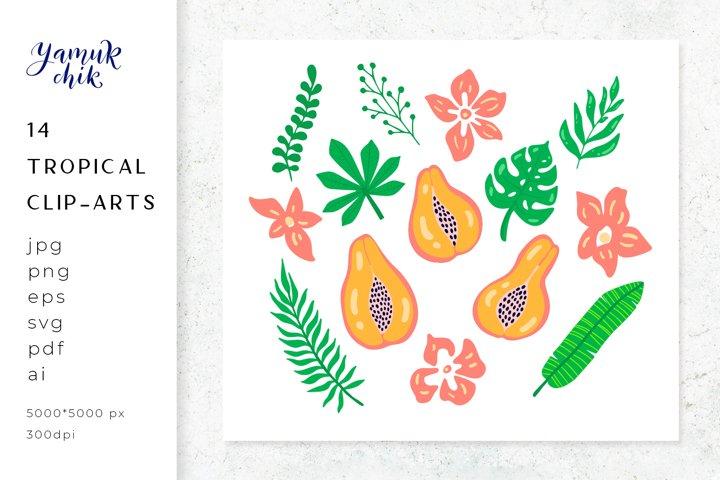 Tropical leaves, flowers Bundle, Papaya clipart, sublimation