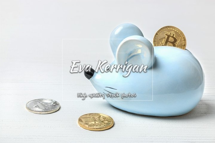 Blue mouse or rat piggy bank with bitcoin coins.