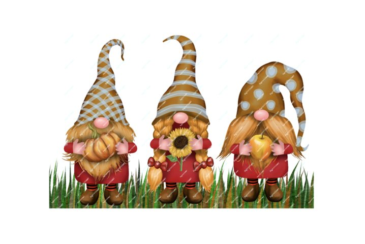 Fall Gnomes Clipart, Fall PNG, Thanksgiving Autumn Gnome
