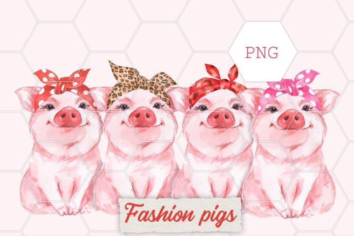Fashion pigs