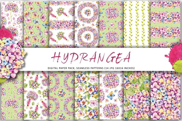 Hydrangea flowers, watercolor clipart, digital paper