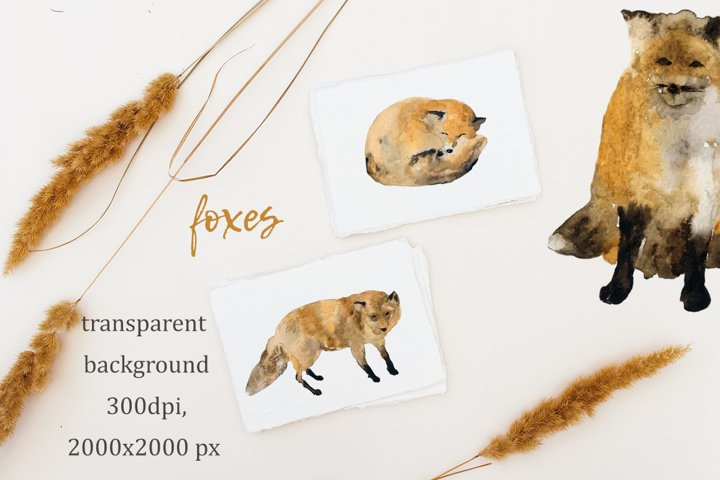 Cute Foxes for Hello Autumn Watercolor set