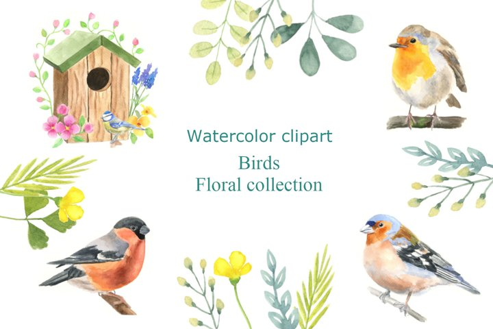Watercolor clipart with birds and floral collection