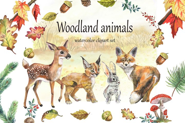 Woodland animals clipart, Forest animals clipart, hand drawn