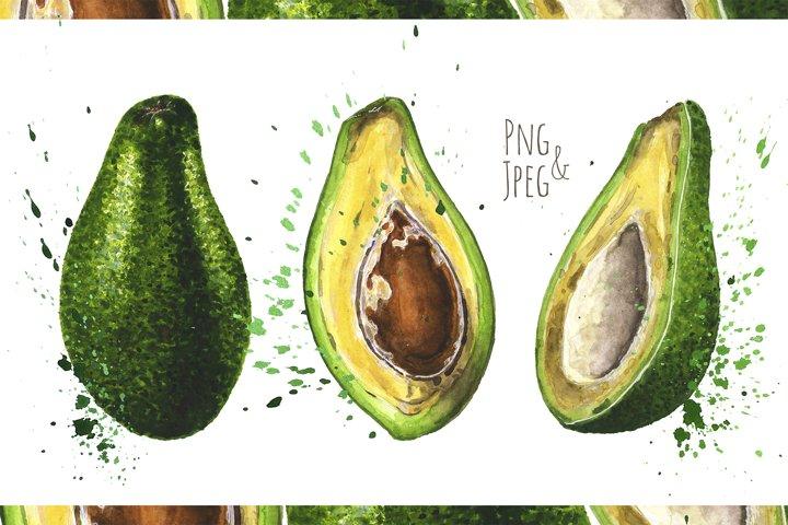 Avocado. Hand Drawn Watercolor Illustrations