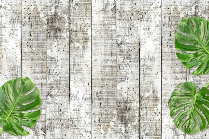 Wood texture Wooden background green monstera leaves