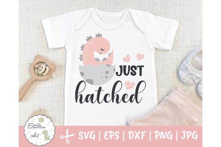 Just hatched SVG, Dinosaur svg, baby girl SVG, Newborn svg,