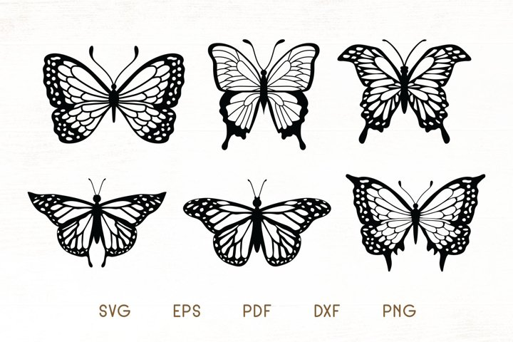 Butterfly SVG - Butterfly Vector Pack of 6