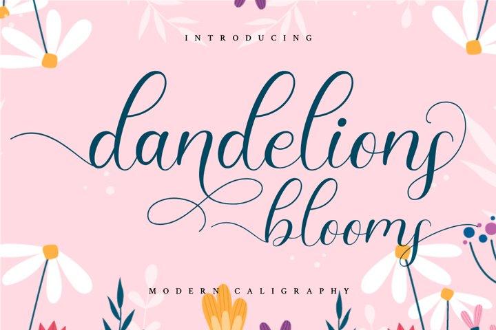 Dandelions Bloom