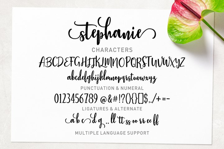 Stephanie Script - Free Font of The Week Design5