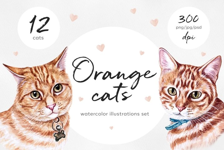 Watercolor cat illustrations. Cute 12 cats. Kitty. Meow.