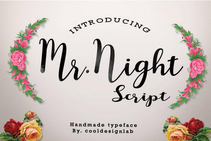 Mr.Night script