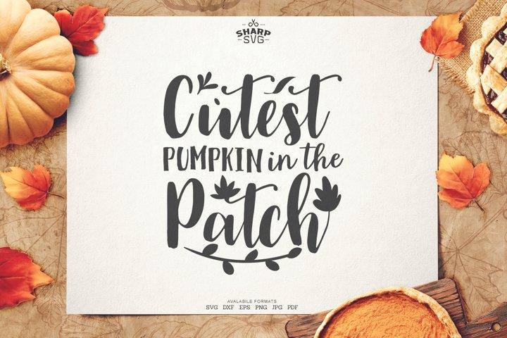 Cutest Pumpkin in the Patch SVG | Autumn SVG Files