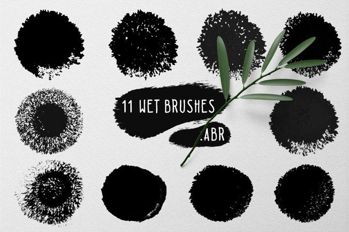 11 wet brushes set .ABR
