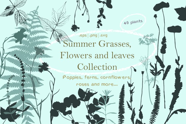 Summer Grasses & Flowers Collection