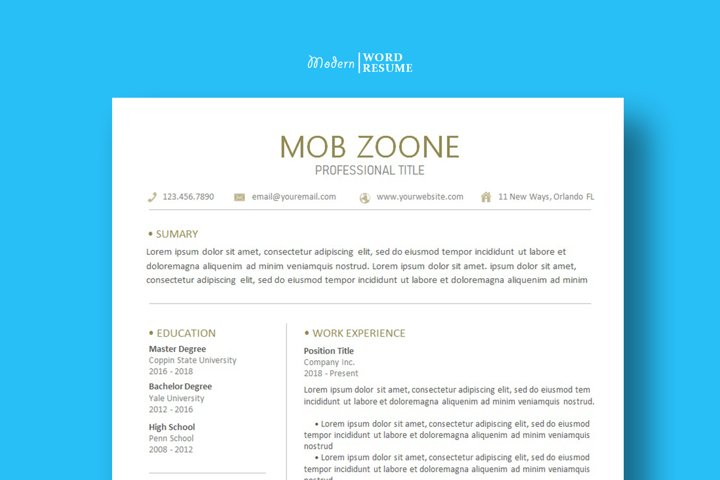 Resume Template Cover Letter for Microsoft Word