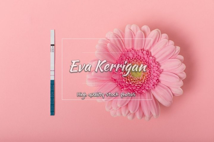 A real pregnancy test with a gerbera flower.