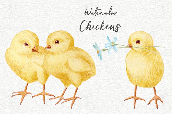 Watercolor Easter Chickens clipart