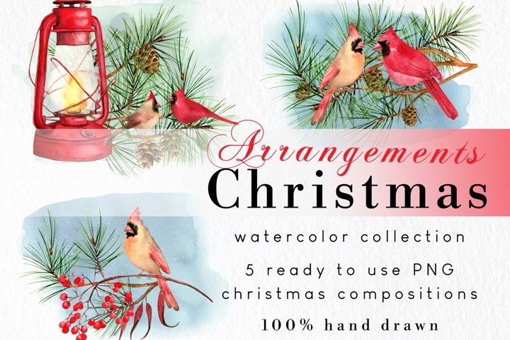 Vintage Christmas cardinal clipart watercolor compositions
