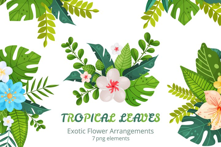 Exotic Flower Arrangements PNG 4