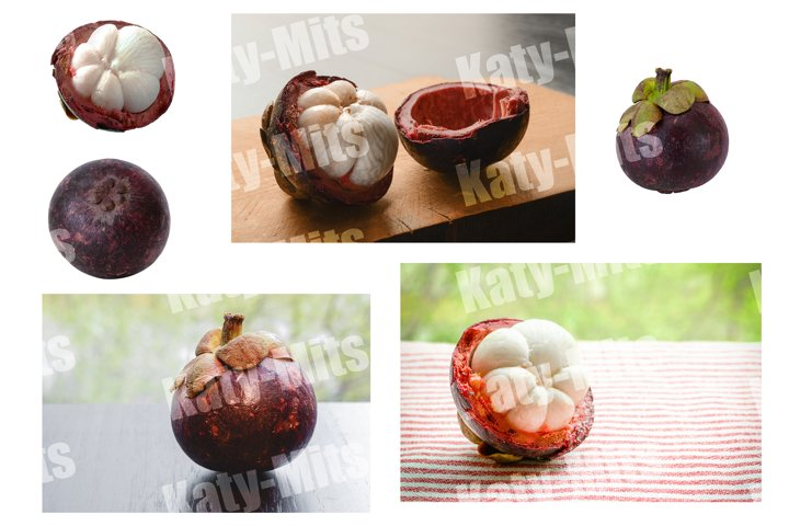 Set of 6 photos of mangosteens isolated and in still life