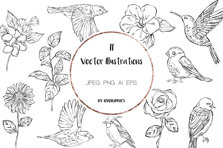 11 Hand Drawn Vector Flowers and Birds
