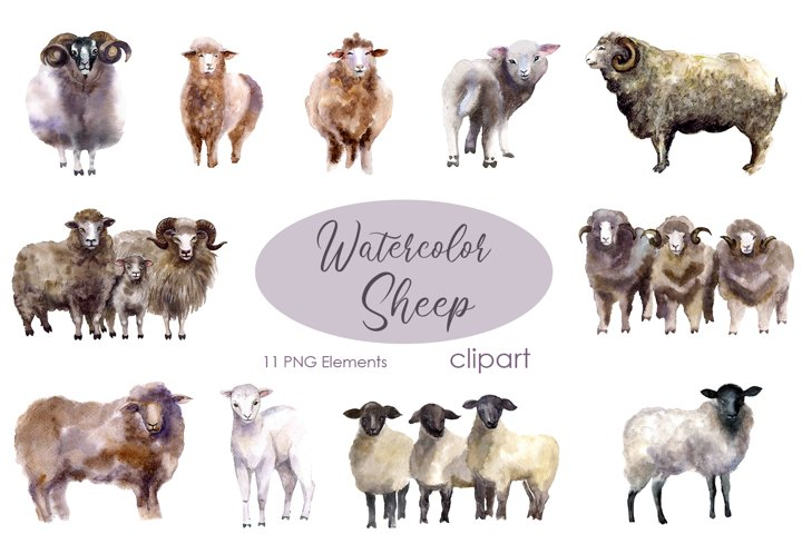 Watercolor Clipart. Sheep clipart. Farm animals clipart