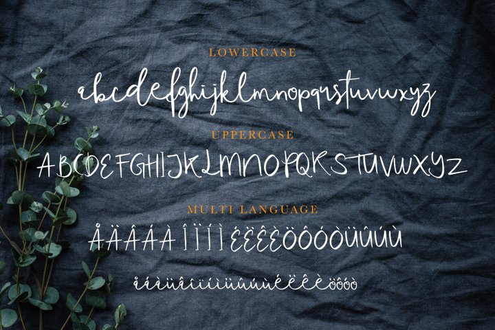 Tequilove - Free Font of The Week Design6