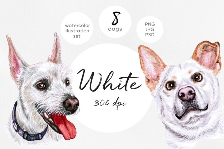 White cute 8 dogs. Watercolor dog illustrations.